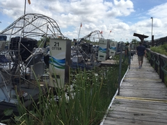 Airboat, Sawgrass Recreation Park