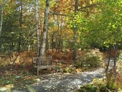 Acadia Park Garden Path