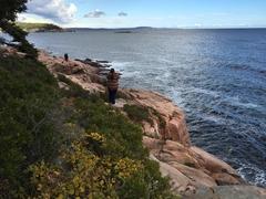 Acadia Park Views