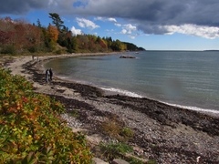 Acadia Park Shore