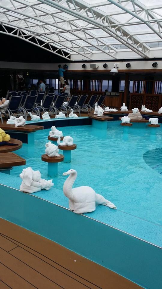 pool animals.jpg
